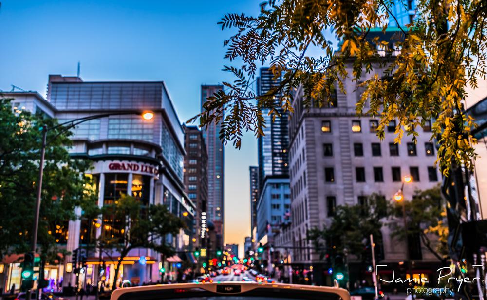 City of Chicago-2.jpg