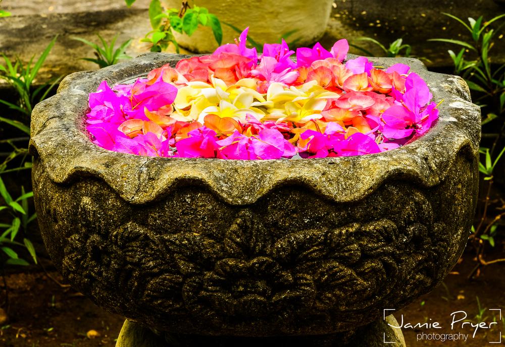 Bali Flowers-2.jpg