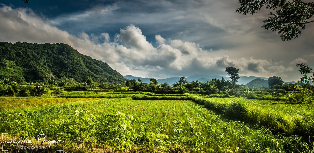Bali Landscapes.jpg
