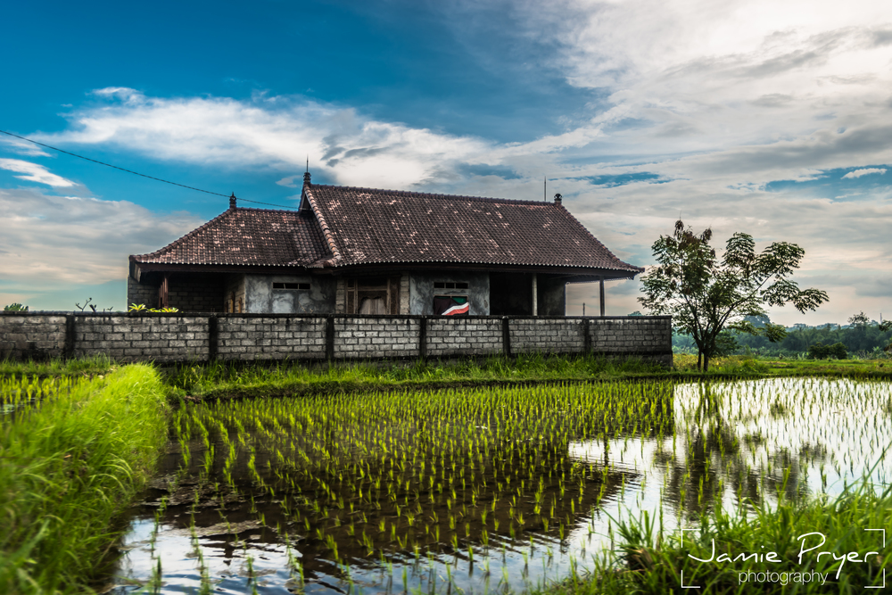Bali Living-2.jpg