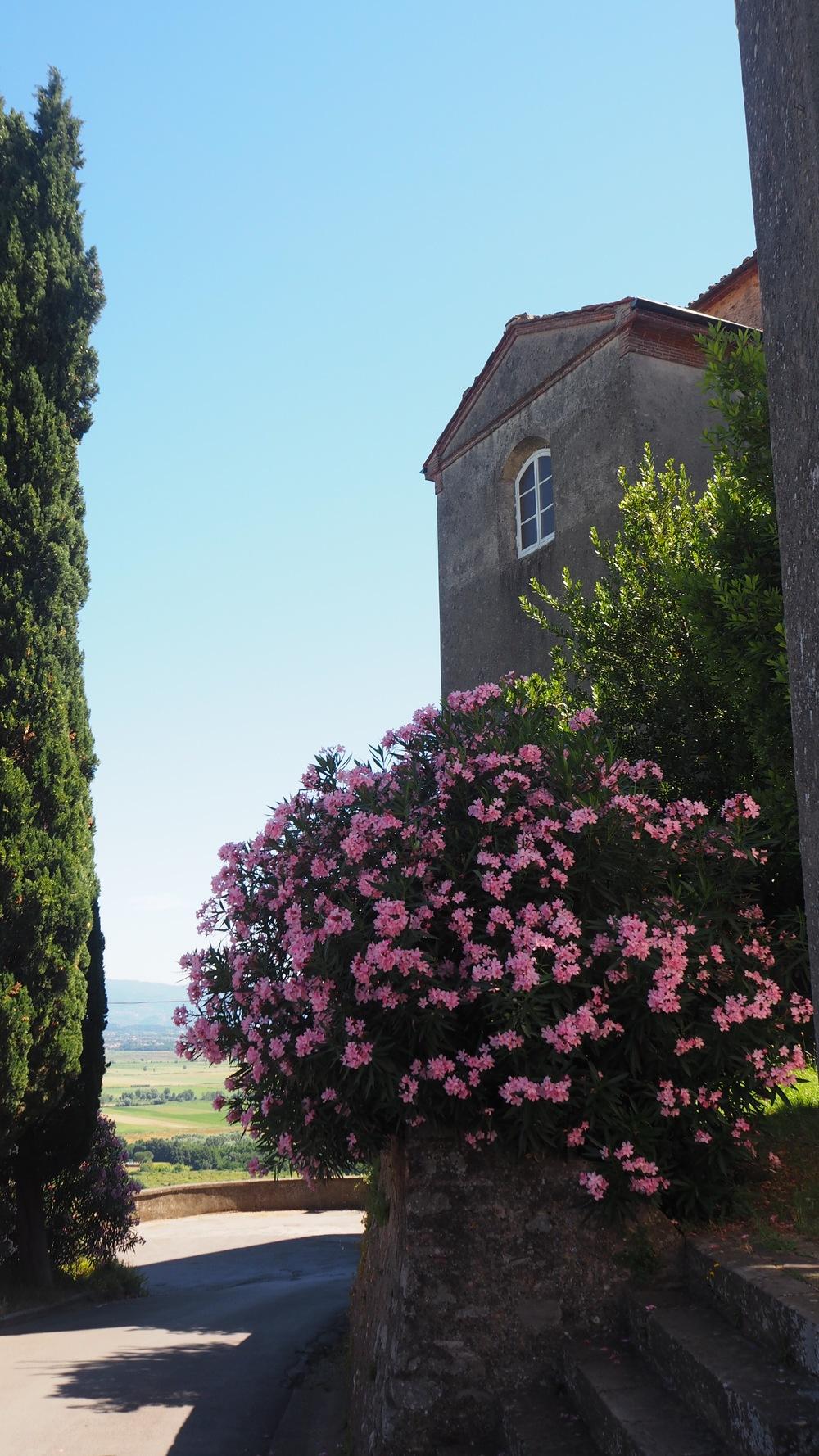Castle Vecchio