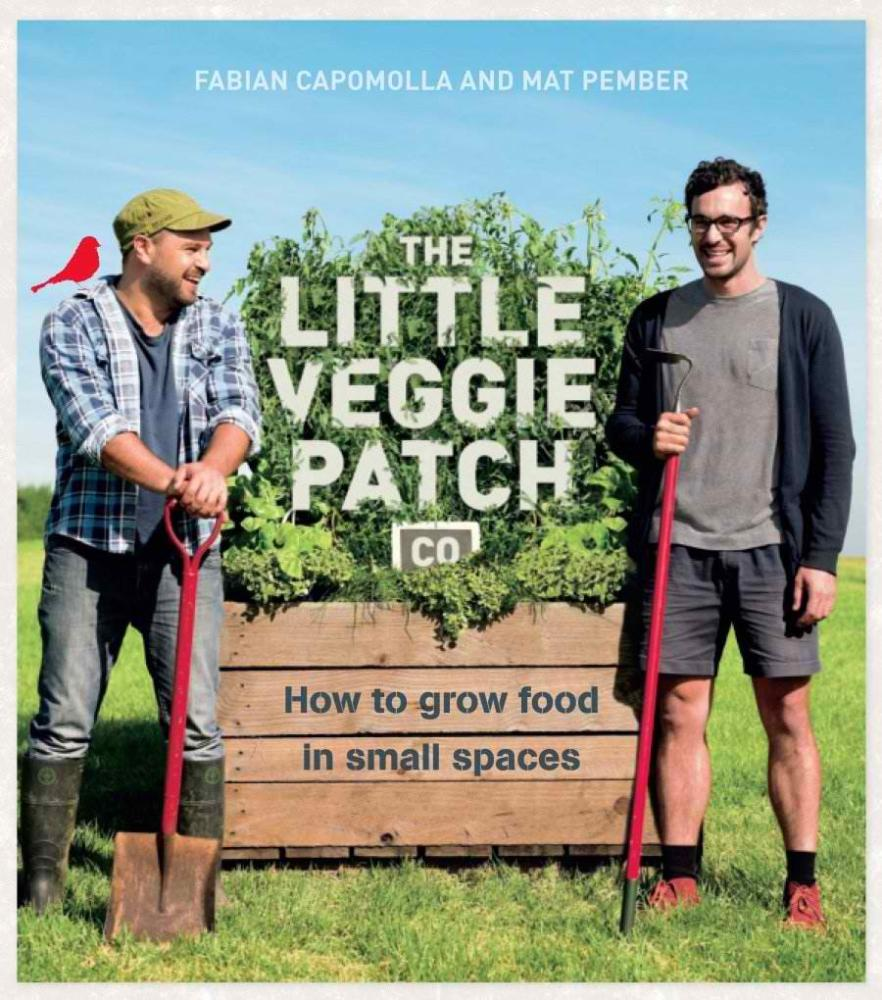the-little-veggie-patch-co.jpg