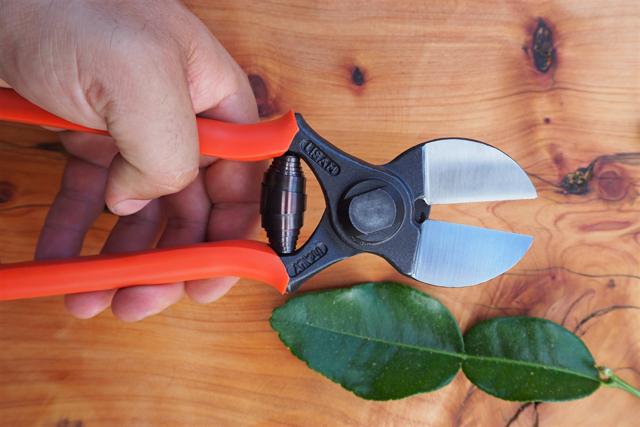 cutter2.jpg