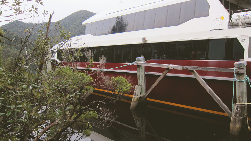 This cruise is a catamaran (dual hull, hence the stability) and is specifically built to suit the river, to reduce impact on the delicate wilderness environment of this  World Heritage Site .