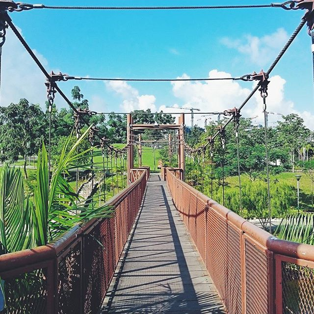 Check out how we rediscover singapore through ✴ #projectrediscoversg ✴ New post up on the blog (link in bio) on #punggolwaterway. #punggol #nparks #exploresingapore #yoursingapore #adventurebridge