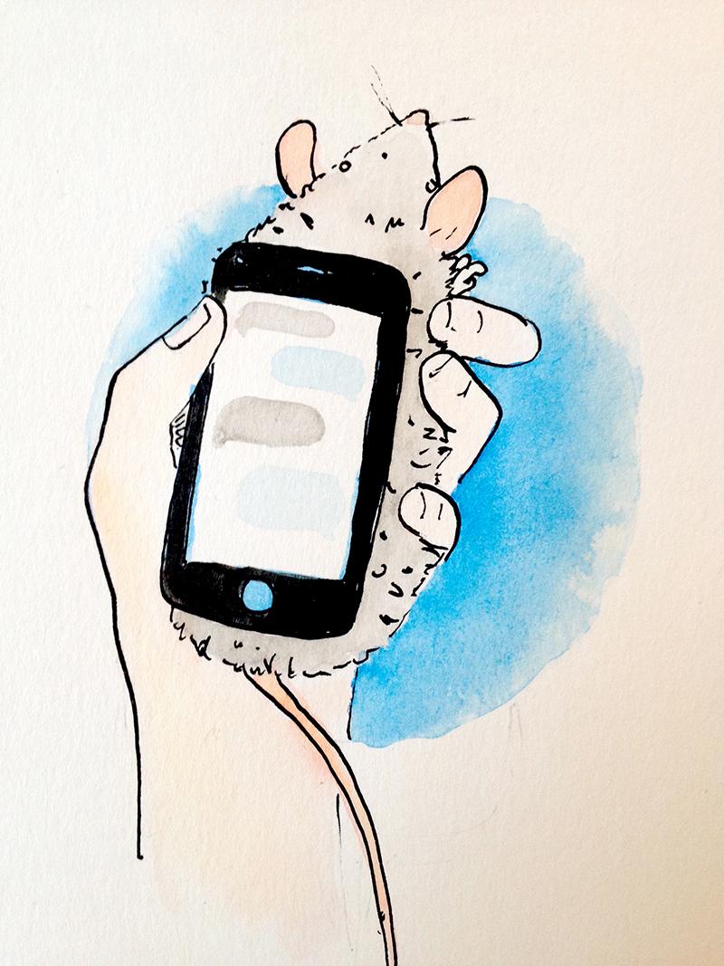 rat phonesmall.jpg