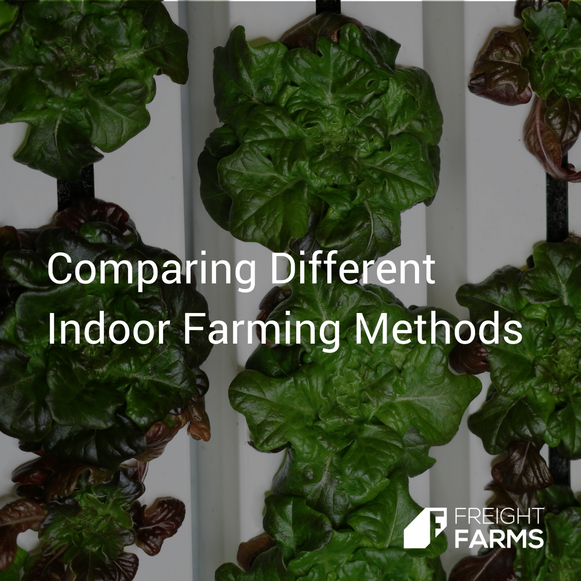 Freight Farms_Articles_Icon_Indoor_Farming__1