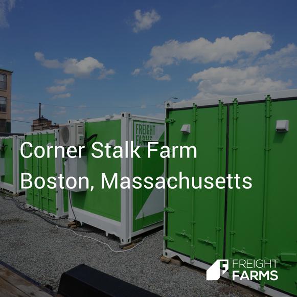 Corner Stalk.png