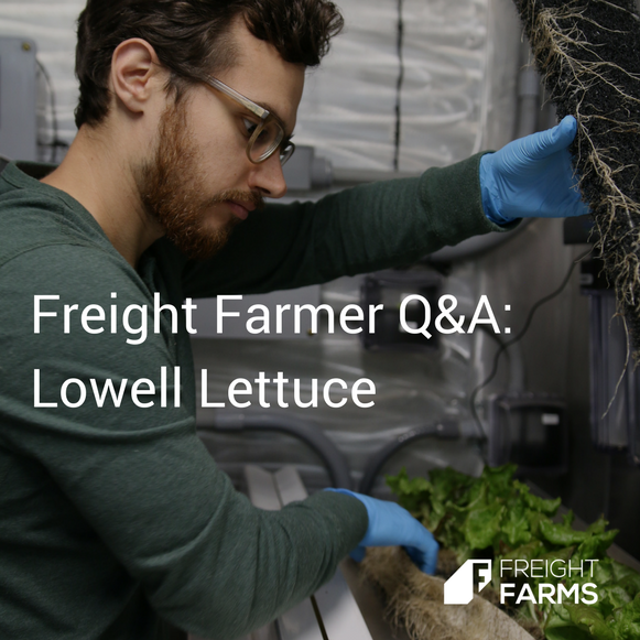 Freight Farmer Q&A Lowell Lettuce.png