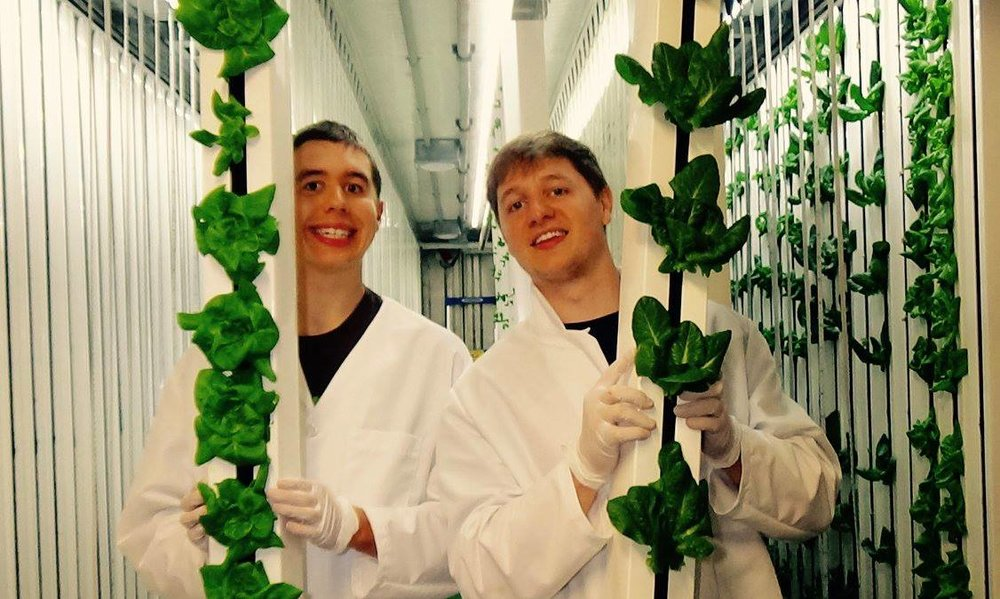 Zach and his brother Nic showing off some heads of hydroponic lettuce from their farm.