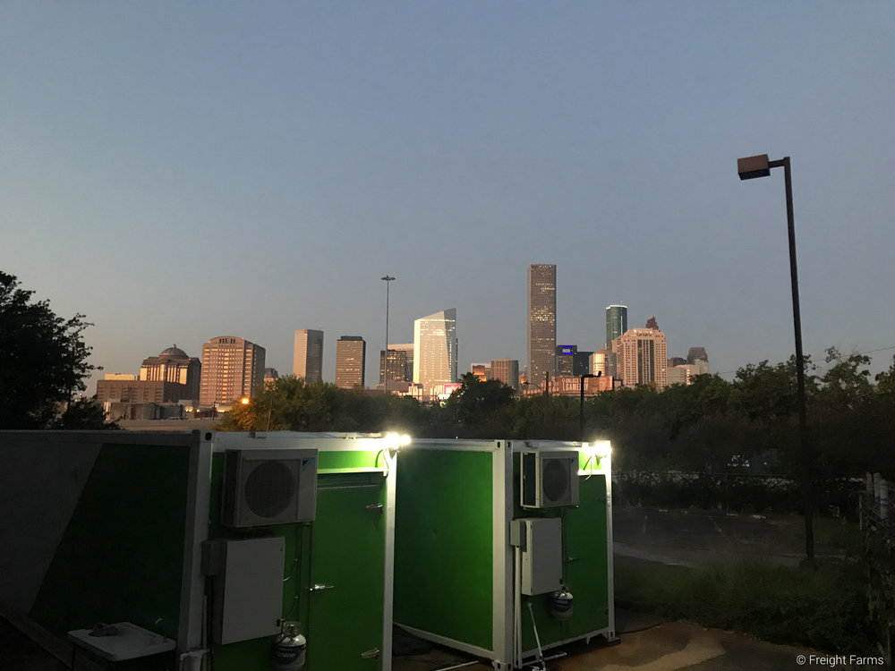 Both Leafy Green Machines with the Houston Skyline