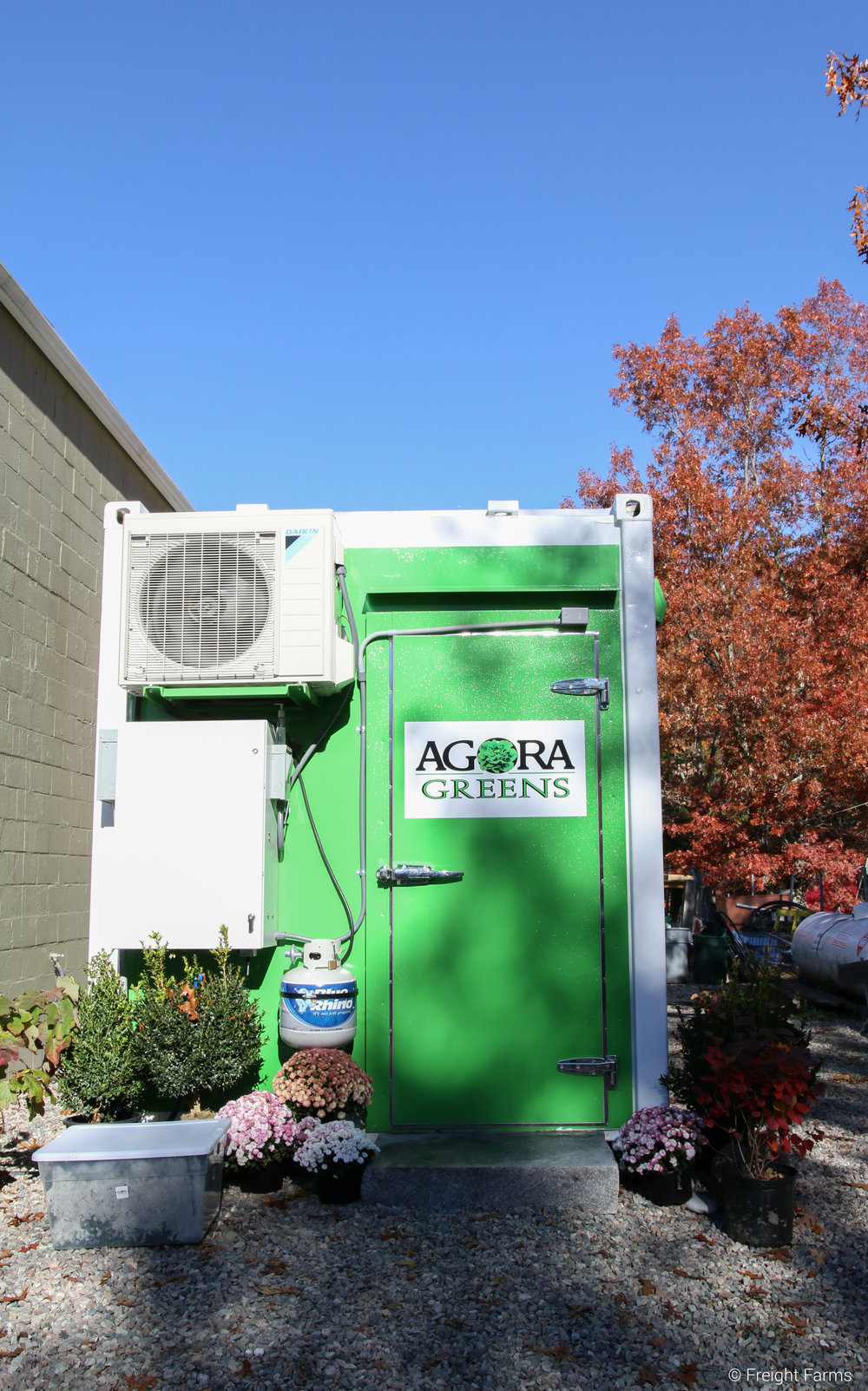 Agora Greens' Leafy Green Machine.