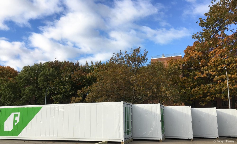 Freight Farms containers before they got custom wraps with the Square Roots branding!