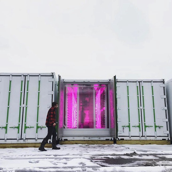 Square Roots-Container-Farm-2.jpeg