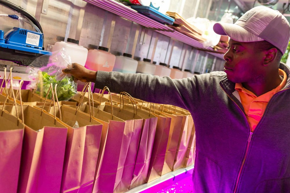 Grown farmer, Josh, finishes packaging CSA shares for 50 employees. They'll be picked up later in the day.