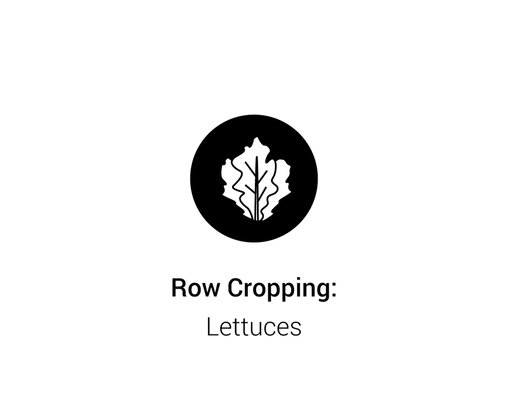Greenery_Row Cropping.png