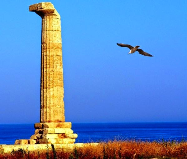 The Doric column of Hera's sanctuary on Capo Lacinio, Crotone