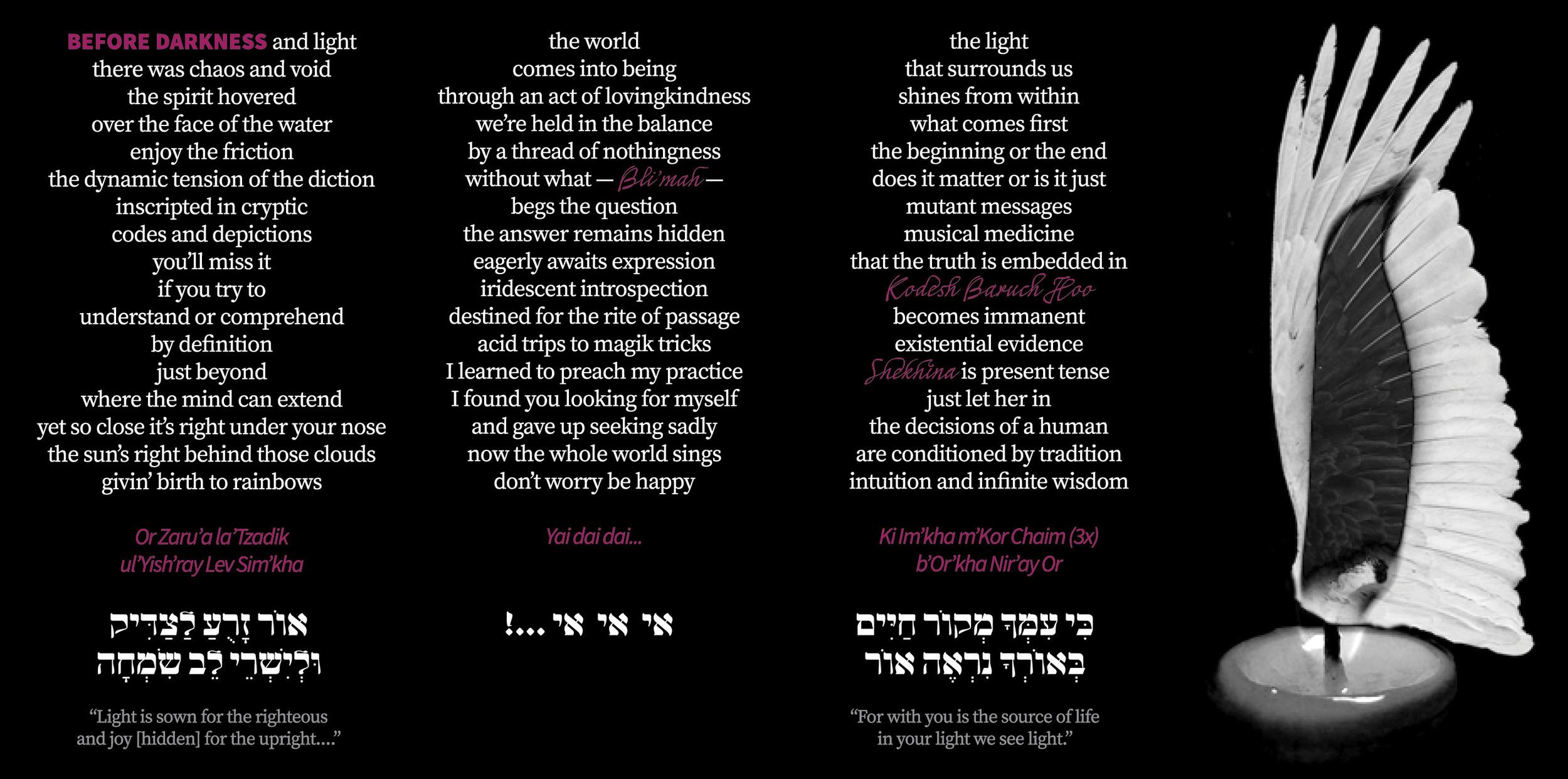 before darkness (or zarua) — darshan