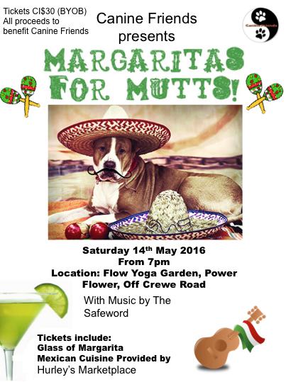 Margaritas for Mutts