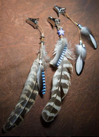 Mane Feathers!