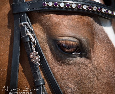 Impromptu photo session @ the horse show