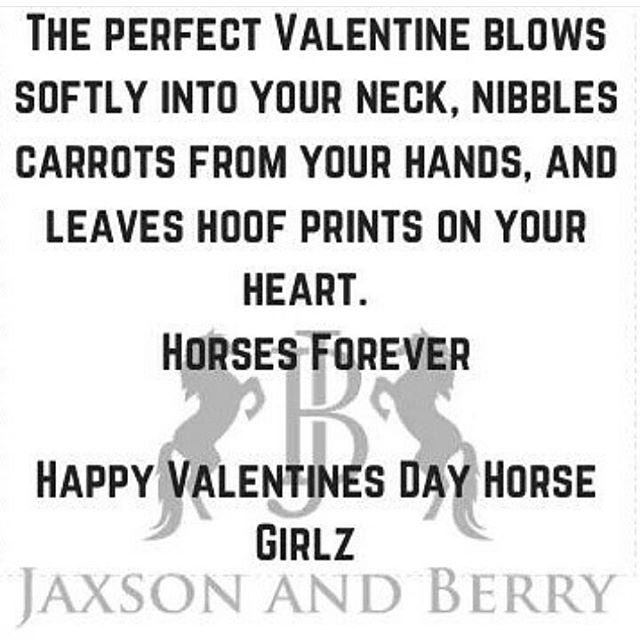 Happy Valentine's Day horse girlz  #horsegirls #horses #horsesforlife #horsesforever #jaxson_and_berry #jaxsonandberry