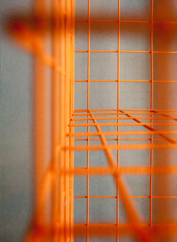 ©Studiopepe | Max&Co. | Minimal Terrarium