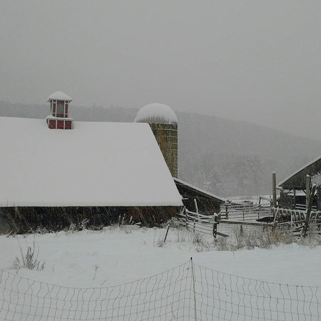 Winter and a lovely old barn that has stood strong for so long.# vermontbarns #firstsn