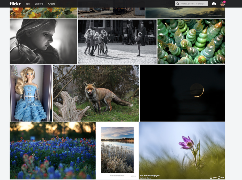 A screen shot of the in explore group on Flickr. One of these things is not like the other!