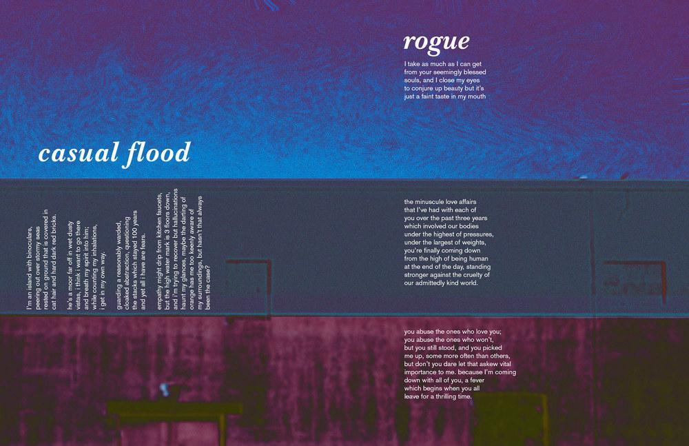 rogue-casualflood.jpg