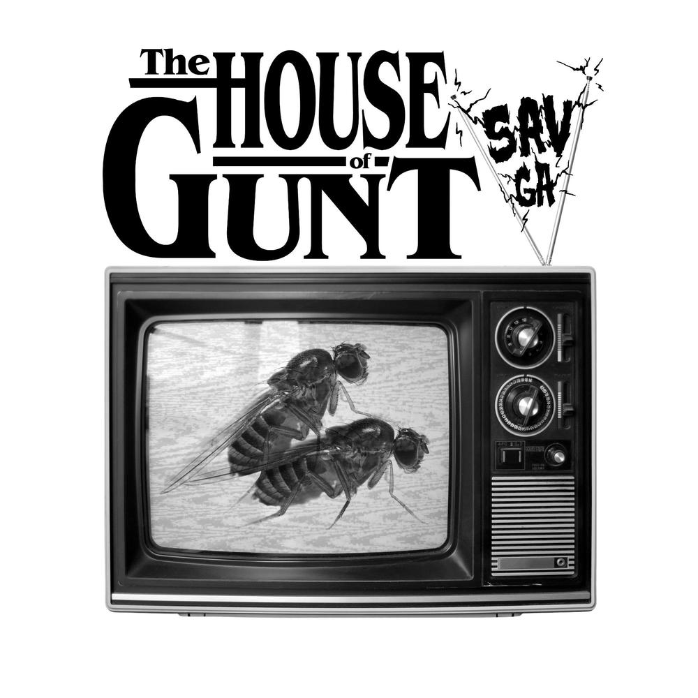 An Introduction To The House: GUNT: An Introduction