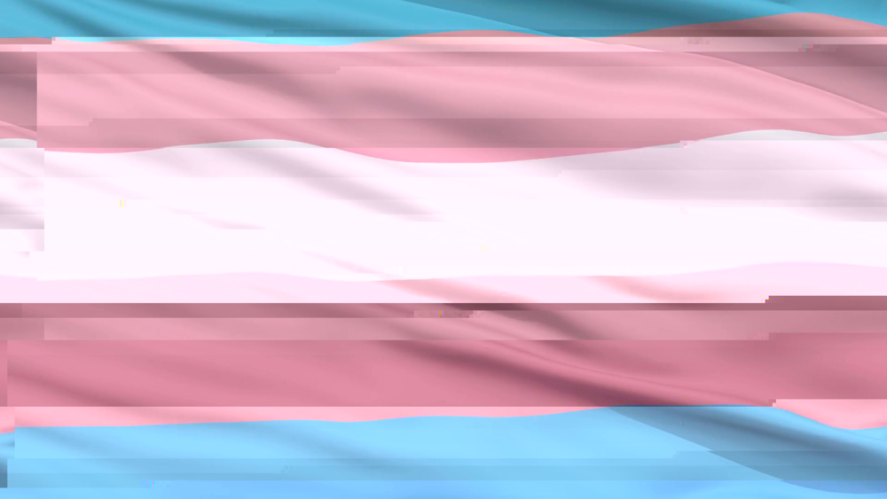 transgender-pride-flag-close-up-realistic-3d-animation-seamless-loop-10-seconds-long_b30yrv0o__F0000-glitched-3-6-2019-11-20-54-AM.png
