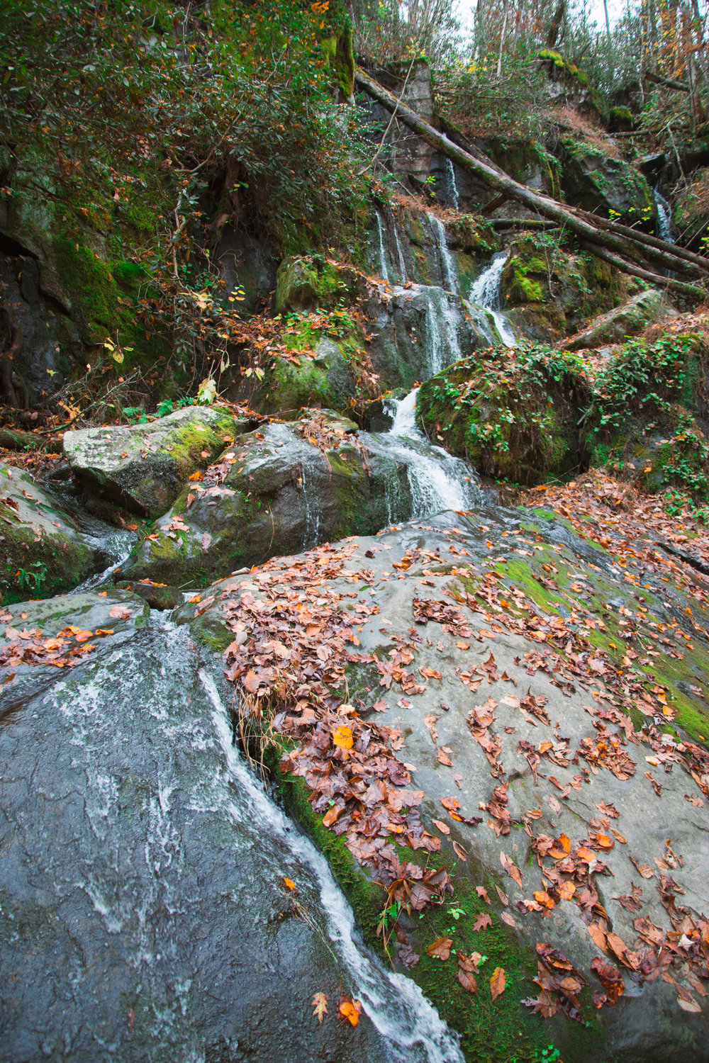 smoky-mountains-travel-chamber-photoraphy-gatlinburg-2.jpg
