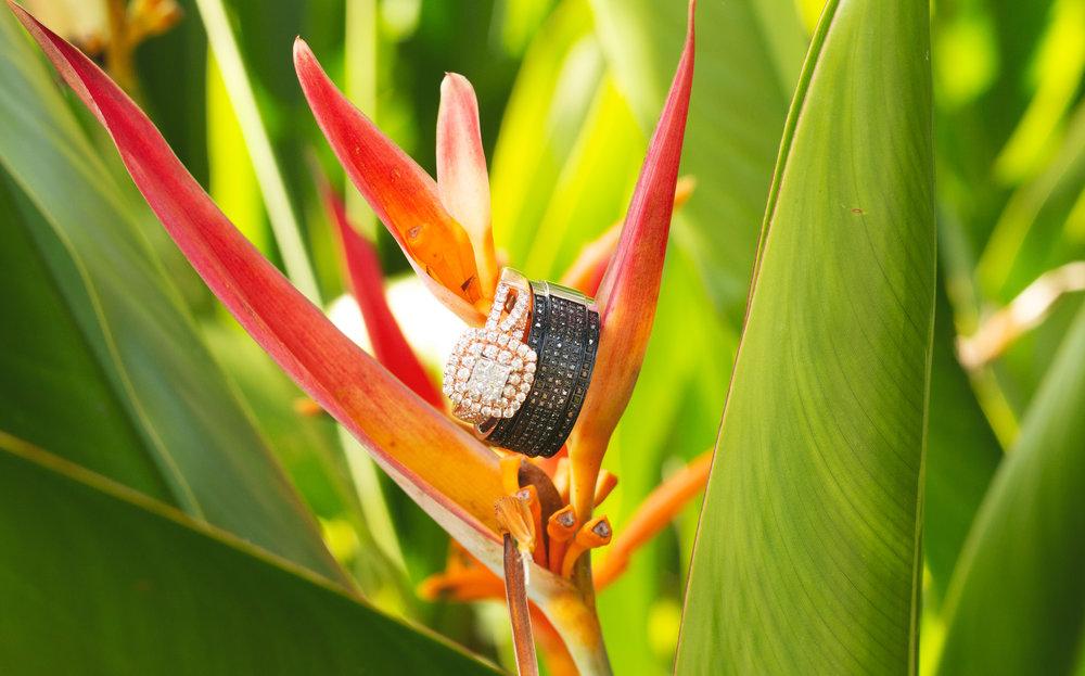 rebekah-and-freddy-harmony-gardens-wedding-chamber-photography-moments-antoine-hart.jpg