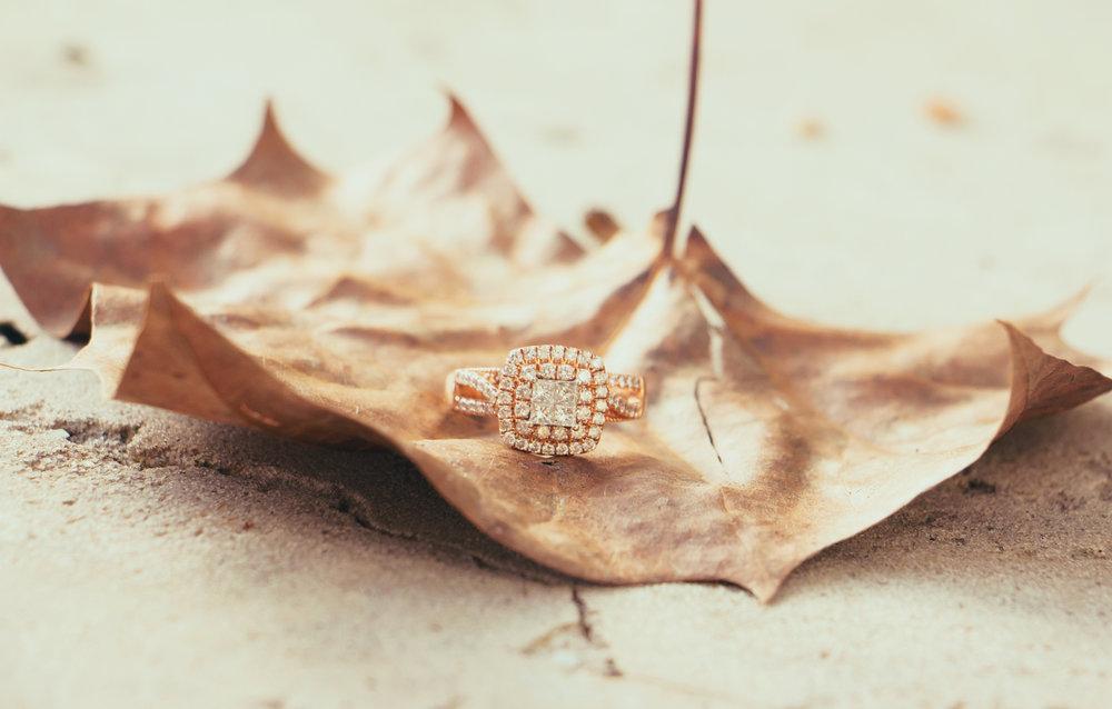 harmony-gardens-wedding-chamber-photography-moments-antoine-hart-11.jpg