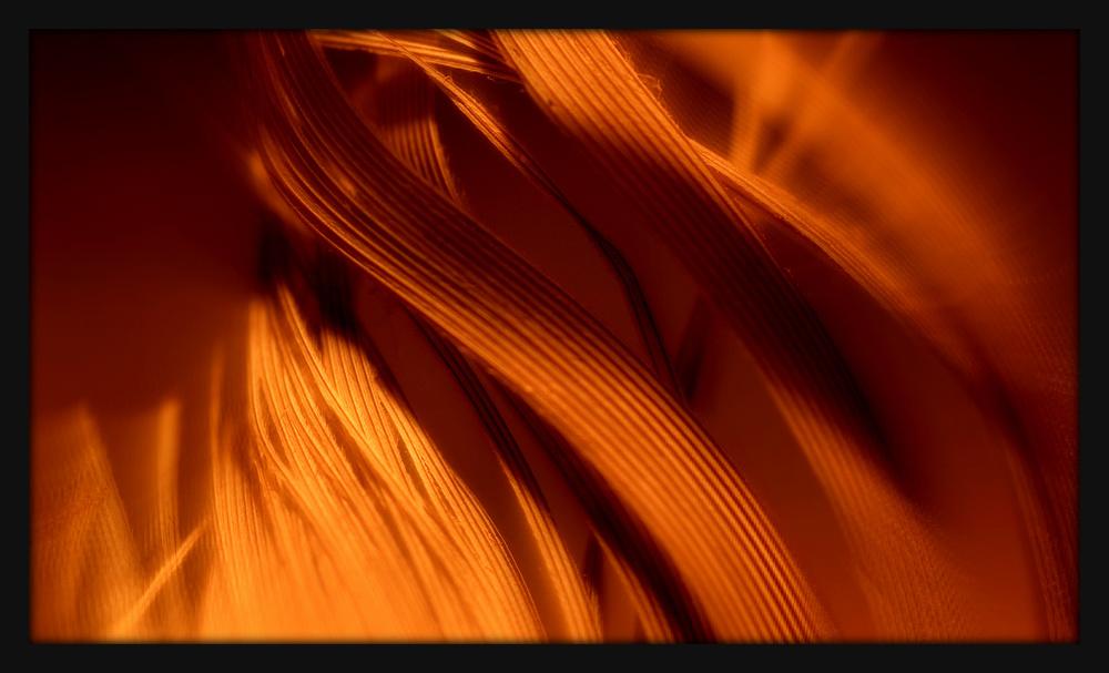 First Horizontal slideshow-185.jpg