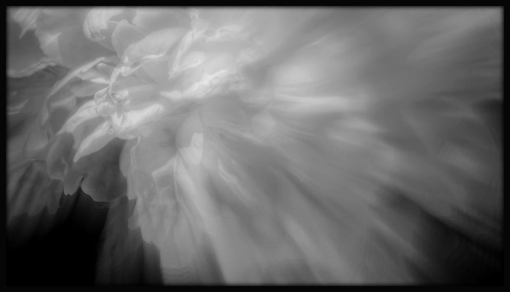 First Horizontal slideshow-074.jpg