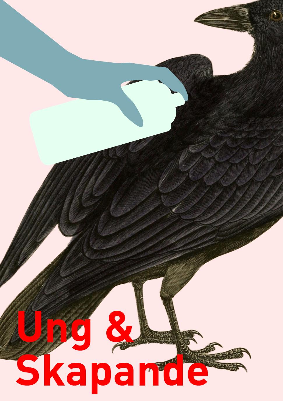 Tema: måla på draken (graffitivägg), motiv fåglar