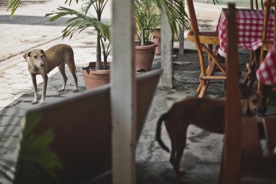 Nicaragua_2blog021