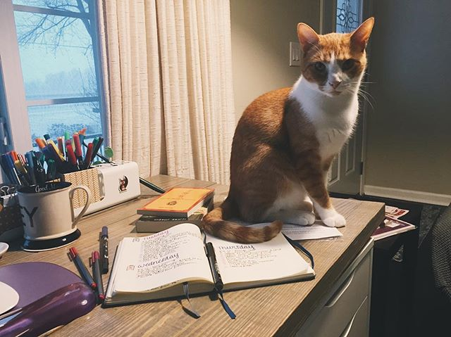 I mean, if he wants to do my work I guess I should let him?