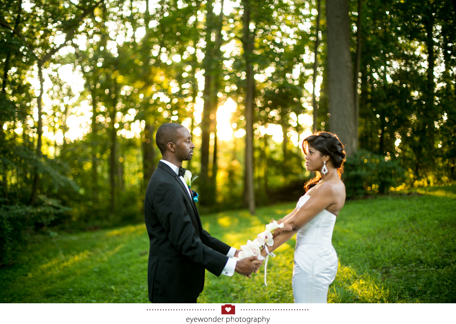 liriodendron mansion baltimore wedding_037