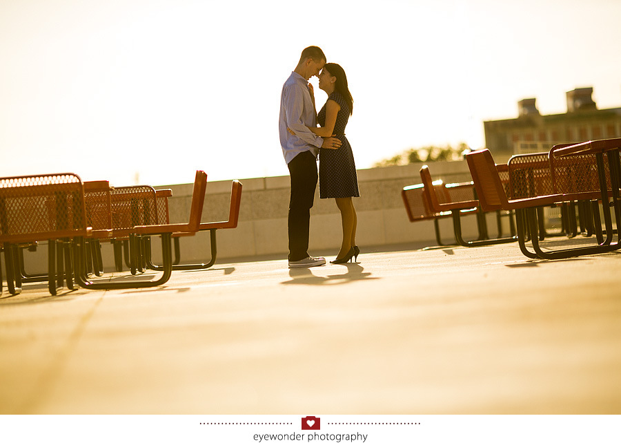lauren scott nationals park engagement session_0010