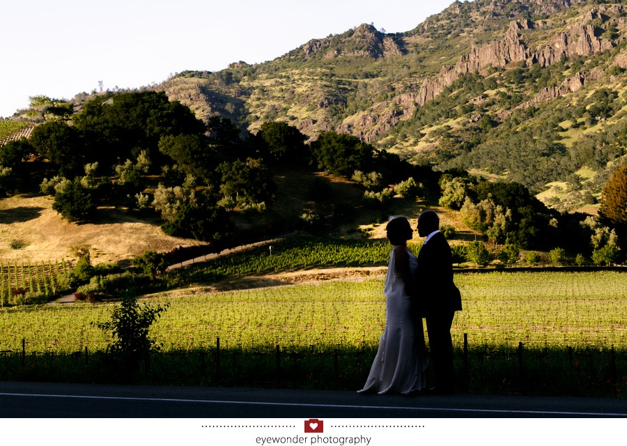 Churchill_Manor_Napa_Wedding_025