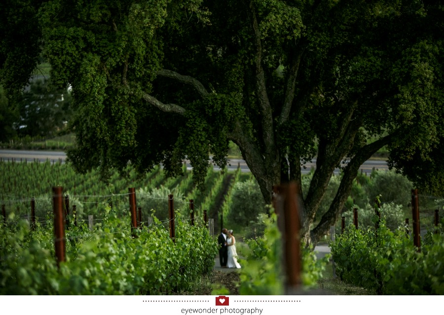 Churchill_Manor_Napa_Wedding_036