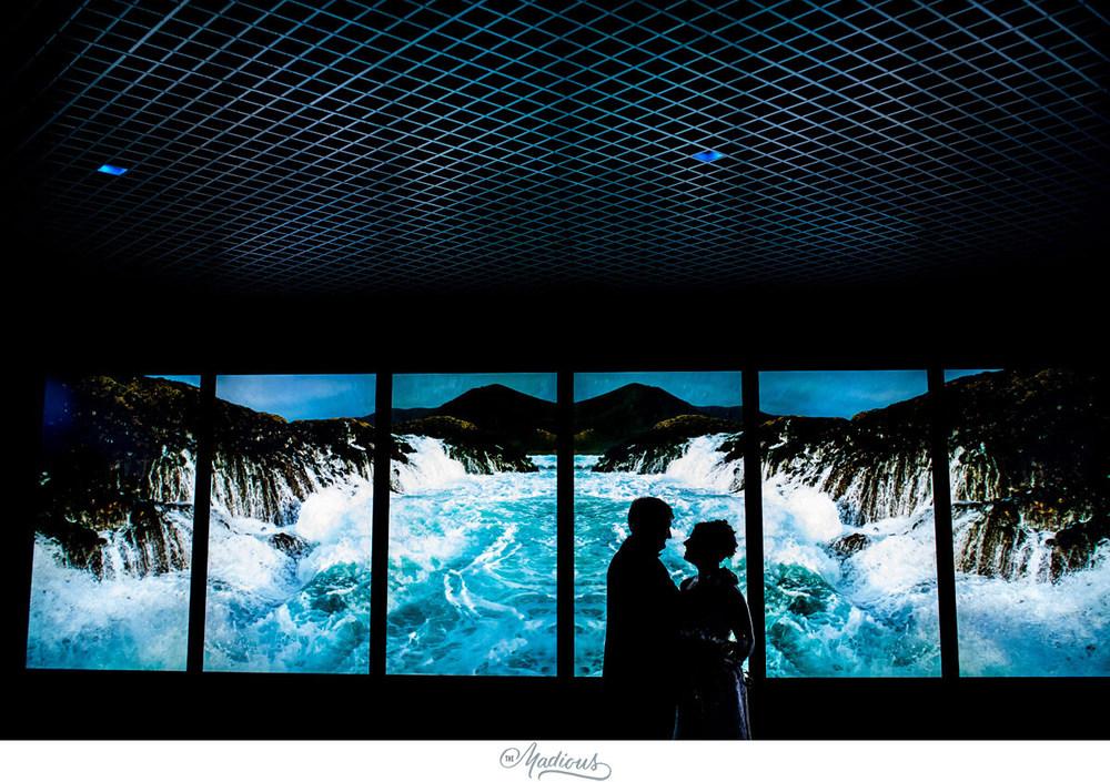 Baltimore Aquarium wedding_0081.jpg