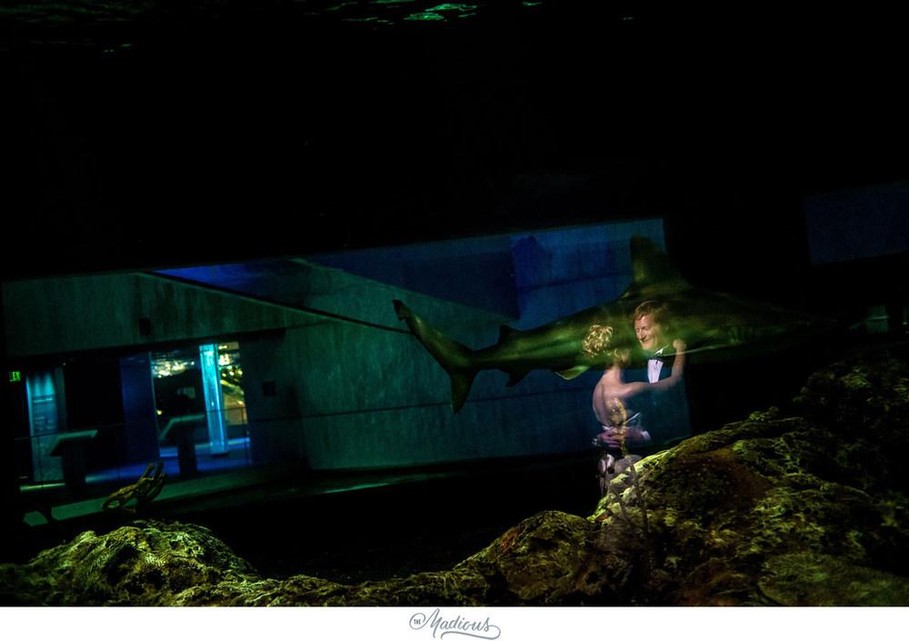 Baltimore Aquarium wedding_0084.jpg