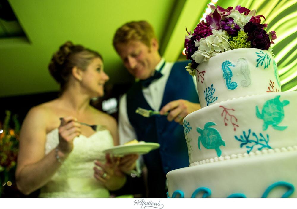 Baltimore Aquarium wedding_0129.jpg