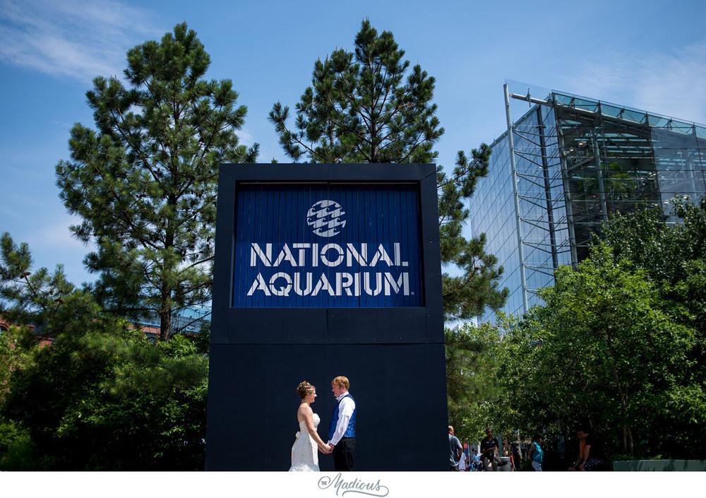 Baltimore Aquarium wedding_0034.jpg