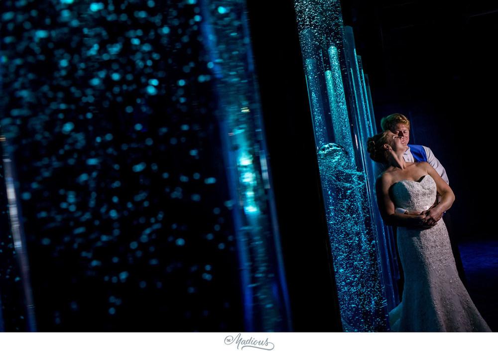 Baltimore Aquarium wedding_0039.jpg