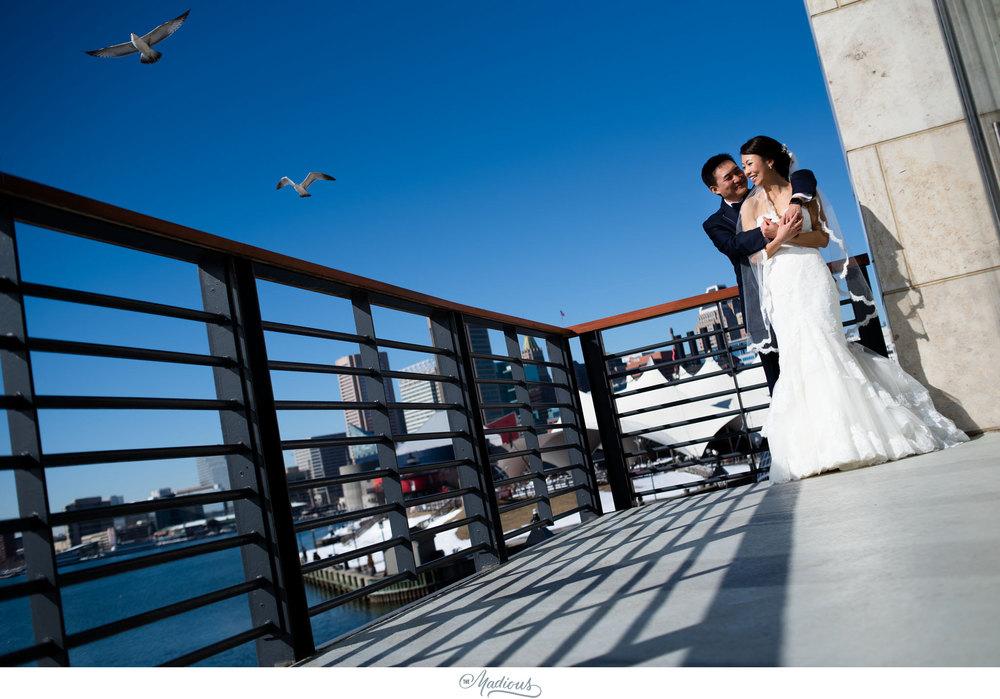 four seasons baltimore chinese wedding_34.jpg